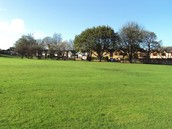 Our Green Spaces