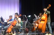 String Orchestra Rehearsal