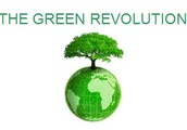 Positive Impacts of Green Revolution