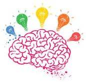 Brain Orentation