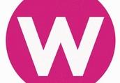 Women CEO Project