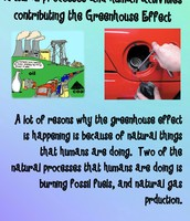 Natural processes and human activities leading to the greenhouse effect
