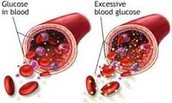 If there is too much glucose in the blood stream it can cause the arties to become blocked.
