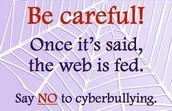 Cyberbullying #1