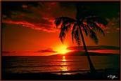 Hawaii--The Aloha State