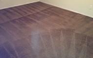 Clean Carpet after Basic Deep Clean