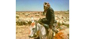 sheperd and flock near Irbid,Jordan