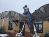 The Snow Falcon!