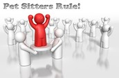 pet sitters rules