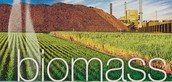 Advantages about Biomass