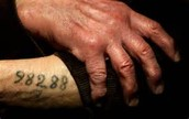 Holocaust tatoo
