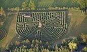 Le maze de Saunders Farm