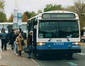 1 PUBLIC TRANSIT BUS
