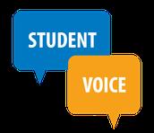 TPGES Student Voice Survey Make Ups