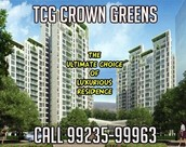 Crown Greens Pune Are Leaving No Stones Unturned To Cash In On The Opportunity To Extract Maximum Profits
