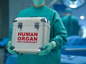 Donate Your Organs!