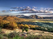 DAVIS MOUNTAINS STATE PARK-NATURAL SITE