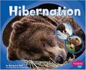 Hibernation (CALL #E 591.56 HAL)
