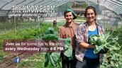 Knox Farm Volunteer Opportunity