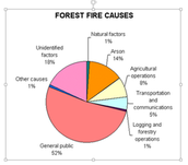 Pie Chart of wildfires