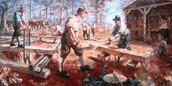 Lumber Trade
