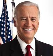 Vice President (runs meetings)