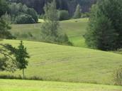 Lõuna-Eesti maastik