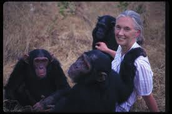 Jane Goodall with chimpaneez