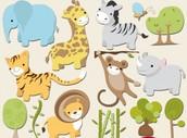 Animals and Plants: