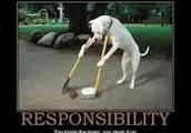 Responsibilidad