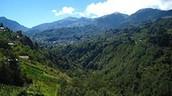 Cuchumatanes Mountains