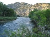 How long is the Arkansas river?