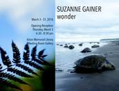 Suzanne Gainer: Wonder