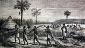 Slavery History and  the African Complicity