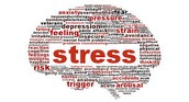 What types of Stress are there?