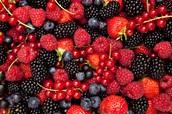 Crazy for Berry