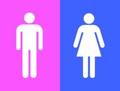 Gender Roles<-->Culture