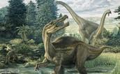 160 million years ago