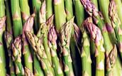 Hearty Aparagus