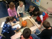 5th grade measuring and estimating pumpkins