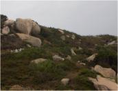 rock disintergation