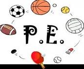P.E. information