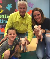 Mrs. Coats' students pet these piglets as they study baby animals.