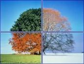 Temperature Range and Seasons