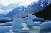 """""""Fui con guias de bigfoot y tenía el mejor dia. Me anduvo en la bahía con los glaciares""""."""