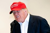 Mr. Trump Sneezing