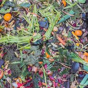 WHAT YOU PUT IN COMPOST
