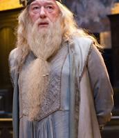 Albus Dumbledore (Head Master)