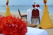 Let us help you plan the ULTIMATE honeymoon!