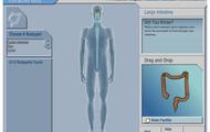Interactive Body